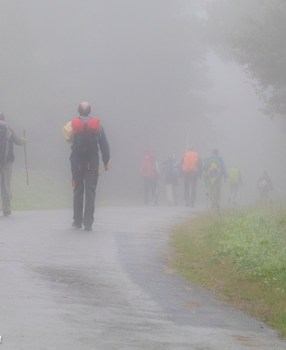 The Camino brings us closer together