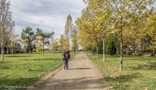 pilgrim memorial path