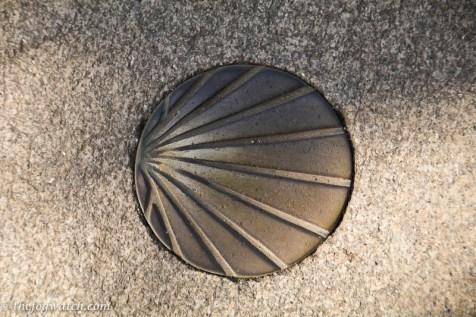 bronze Camino shell