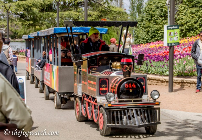 Mini train at Floriade