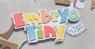 Embryo Tiny [2 Fonts]