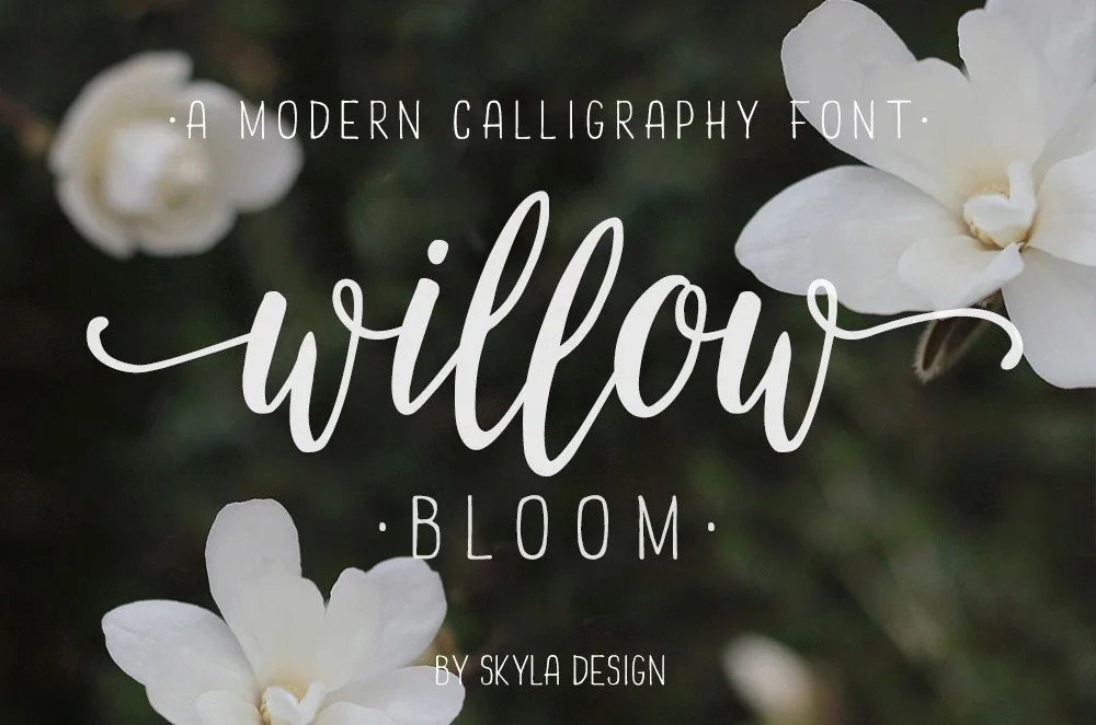 Willow bloom font u the fonts master