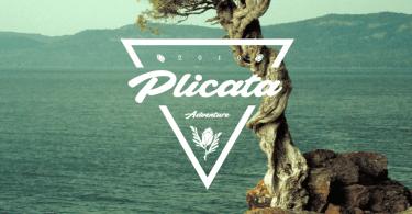 Plicata [1 Font]