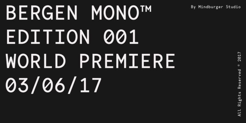 Bergen Mono [6 Fonts]   The Fonts Master