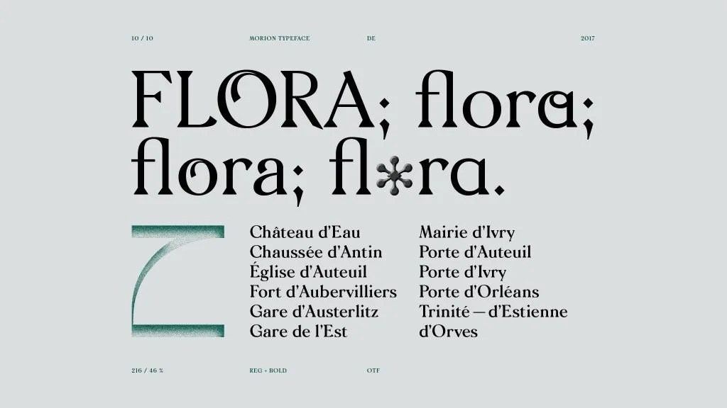 Morion [2 Fonts] • The Fonts Master