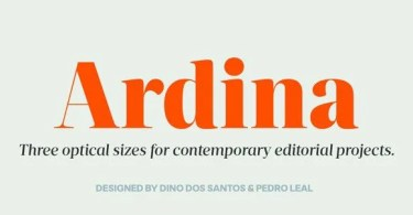 DS Ardina Display Super Family [10 Fonts]