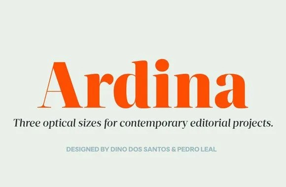Ds Ardina Display Super Family [10 Fonts] | The Fonts Master