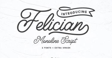 Felician Monoline Script [3 Fonts]
