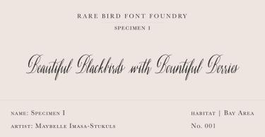 Rare Bird Specimen I Super Family [1 Font]