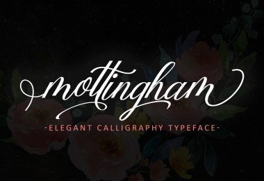 Mottingham Elegant Calligraphy [1 Font]