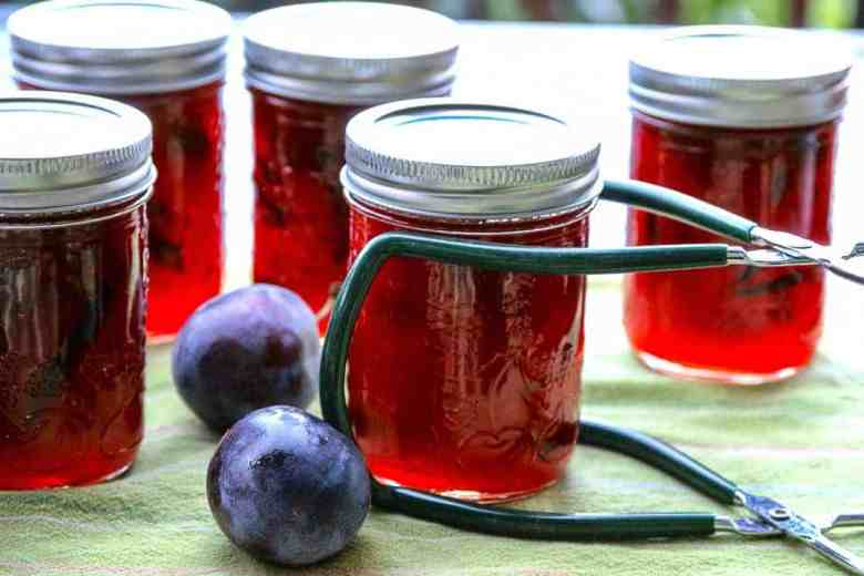 Spiced Plum Jam with Cardamom & Cinnamon
