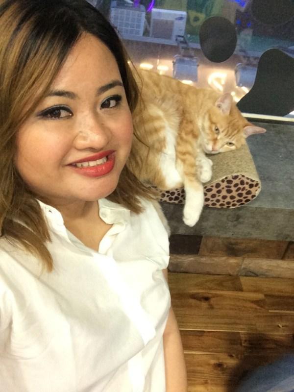 me_cat