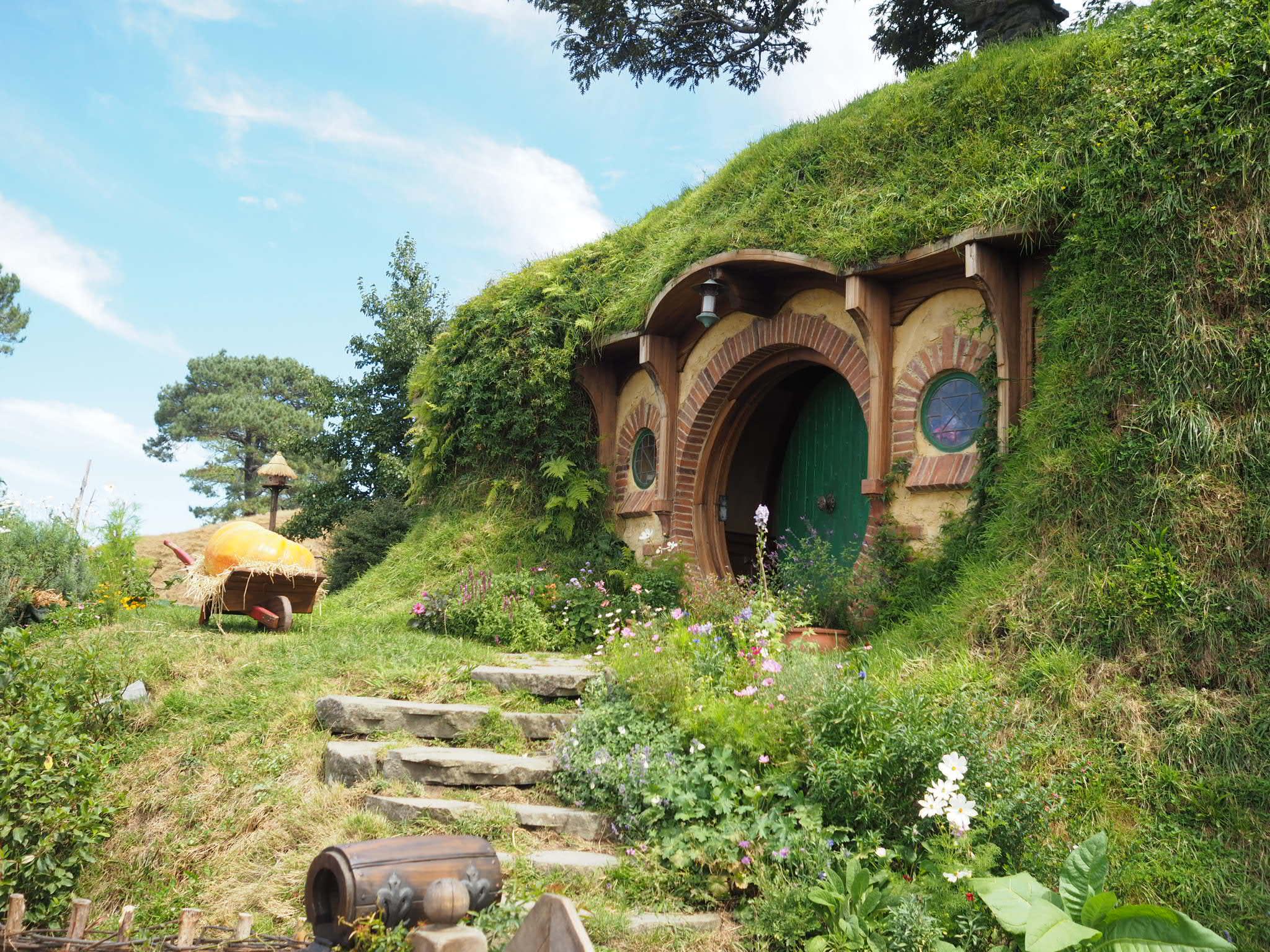Day 2 & 3 - Hobbiton tour & Waitomo glowworm caves