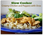 Slow Cooker Creamy Chicken and Peppers with Orzo recipe photo