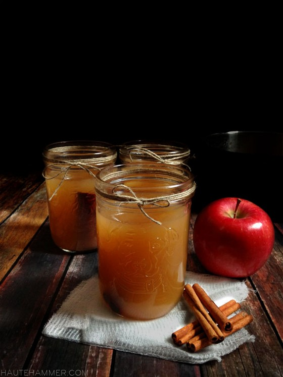 Mulled Apple Cider recipe photo