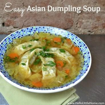 Easy Asian Dumpling Soup recipe photo