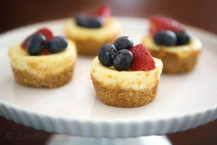 4th of July Mini Cheesecake Bites