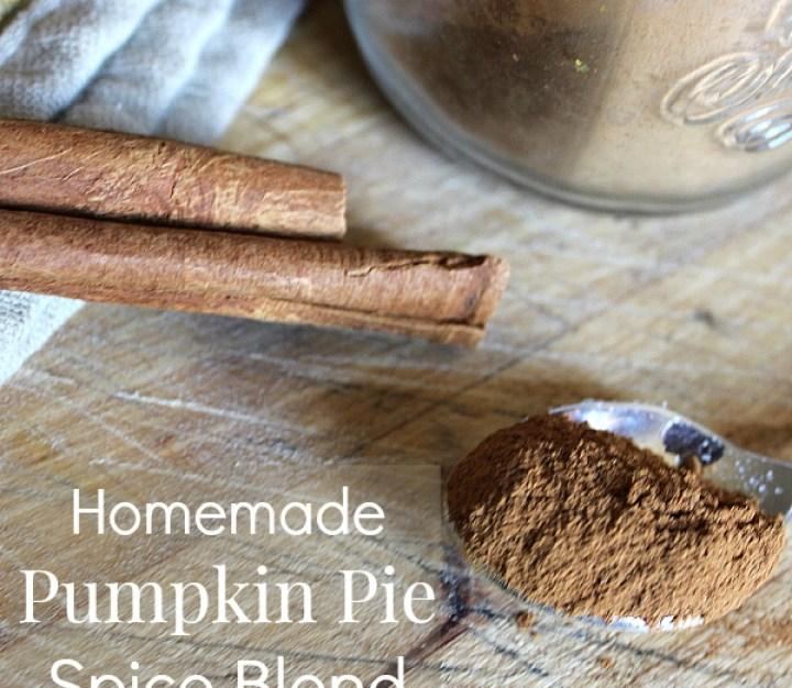 Pumpkin Pie Spice Blend