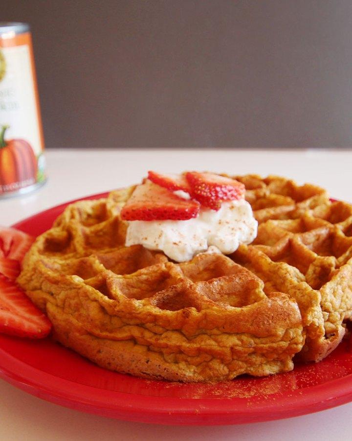 Healthy Pumpkin Protein Waffle Recipe