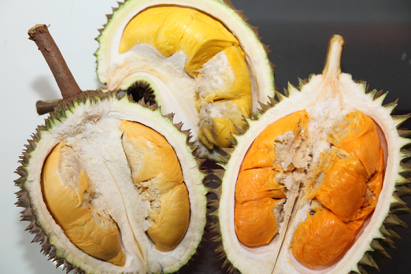 Top 15 exotic fruits - #12 Durian