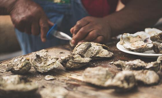 Oyster Roast recipe