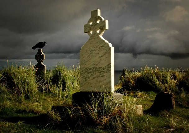 cemetery and crow in Ireland
