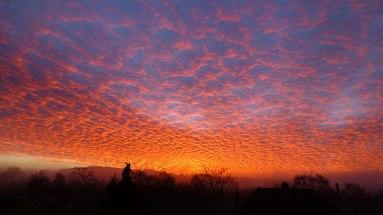 winter_dawn