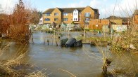 mead_row_allotments