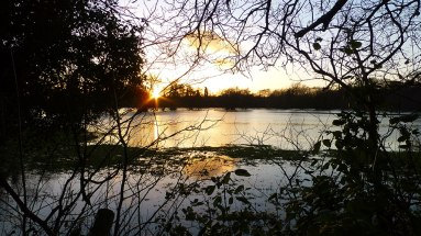 Sunset across the flooded meadows