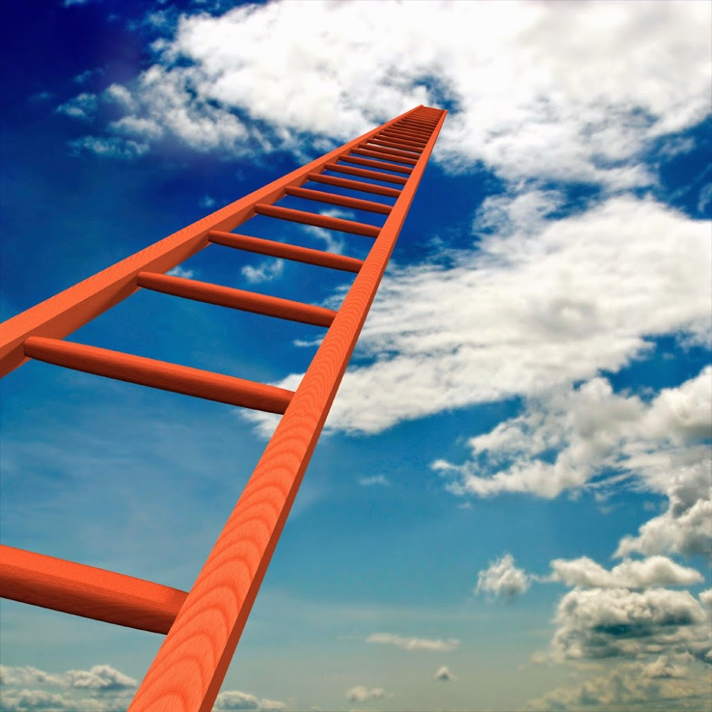 The Ladder Of Success The Force By Luke