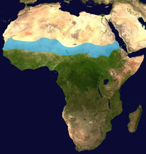 Satellite Map of the Sahel region in Africa