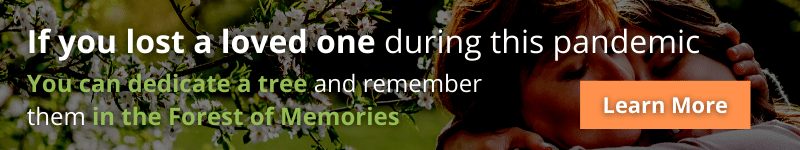 Dedicate a tree in the Forest of Memories