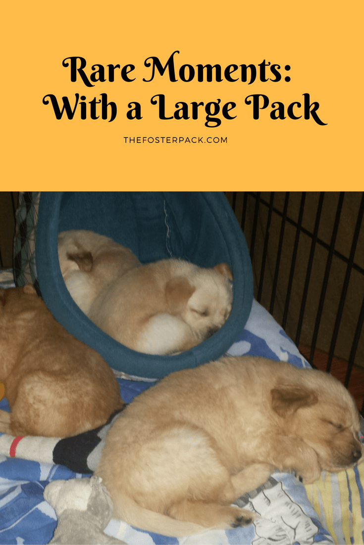 Rare Moments: With a Large Pack