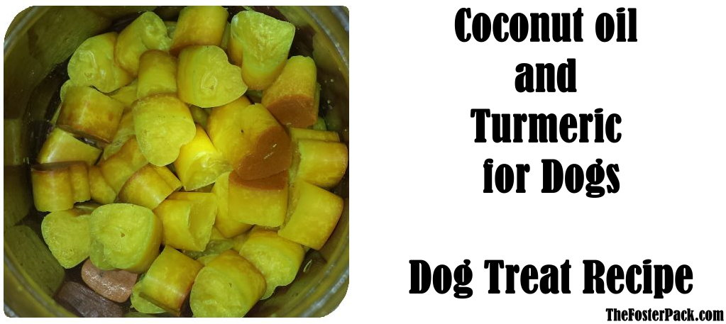 Coconut Oil and Turmeric for dogs