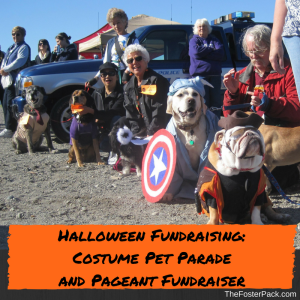 Halloween Fundraising: Costume Pet Parade and Pageant Fundraiser
