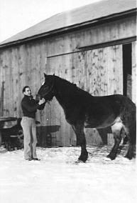 Joe with draft horse outside barn