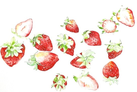 fraises-thefrancofly.com by Jessie Kanelos Weiner