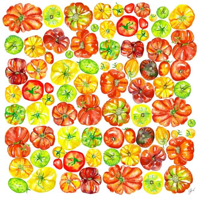 Jessie Kanelos Weiner_Tomato pattern