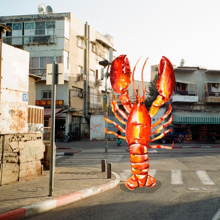 lobster-in-tel-aviv-ld