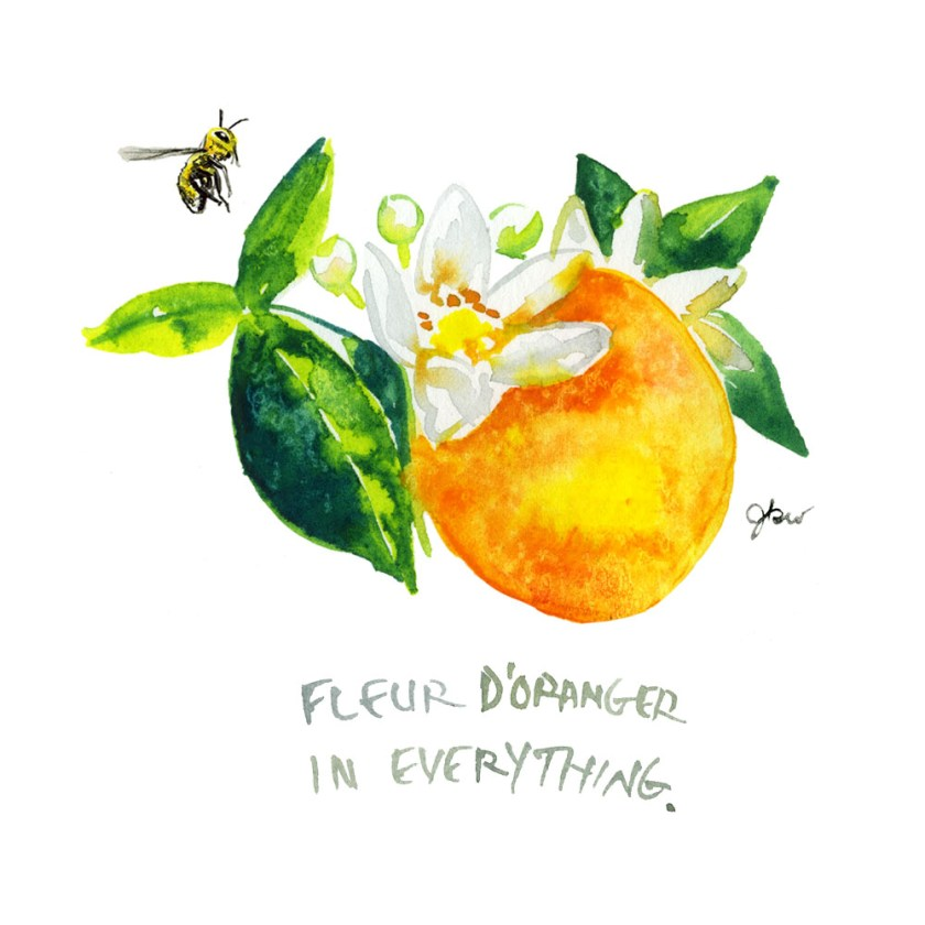6. Jessie Kanelos Weiner_thefrancofly.com_fleur d'oranger
