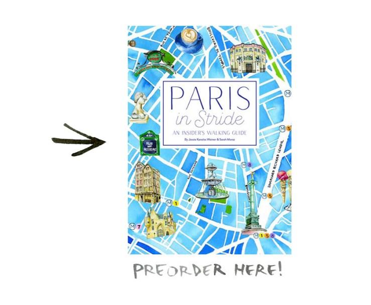 preorder here_thefrancofly.com_2 copy copy