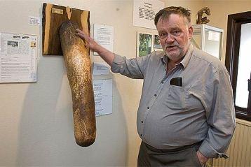 penis museum bizarre photo