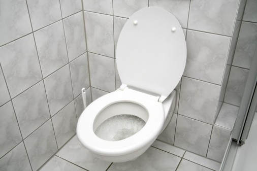 Woman stuck on toilet for two years