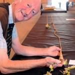 Man grows world's largest parsnip