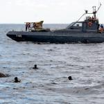 Elephant found swimming in sea 9 miles from land