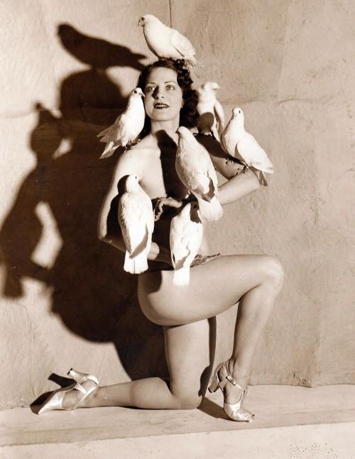 burlesque doves