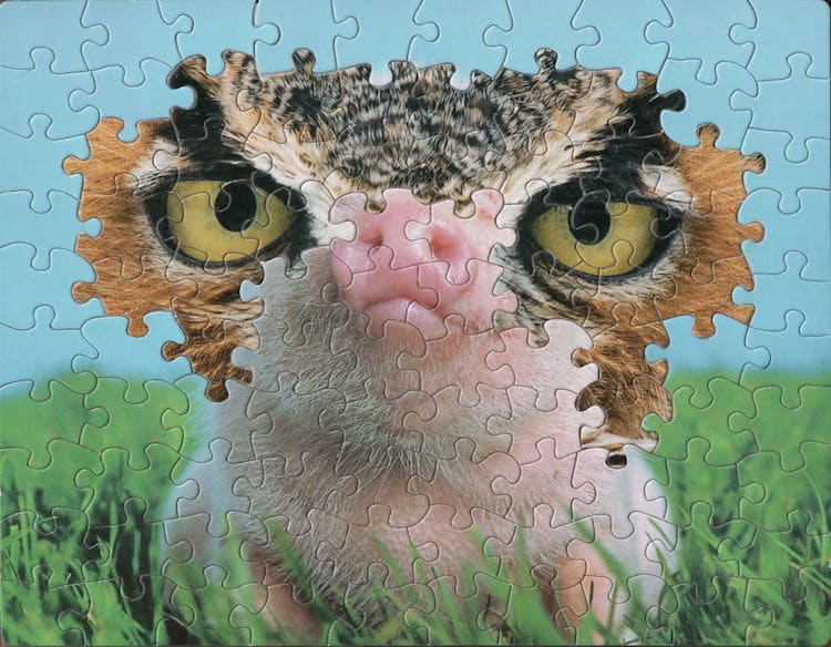 surreal jigsaw puzzle art