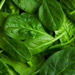 Scientists Train Spinach To Send E mails