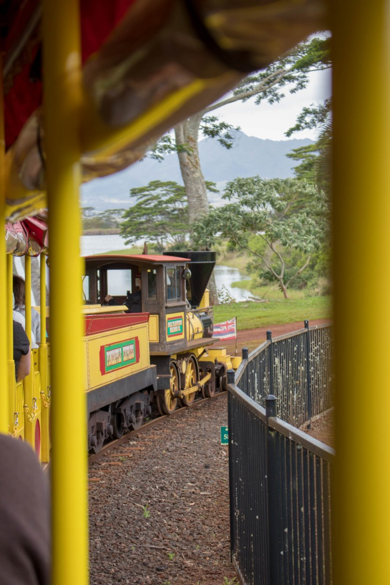 Pineapple Express Train - Dole Plantation