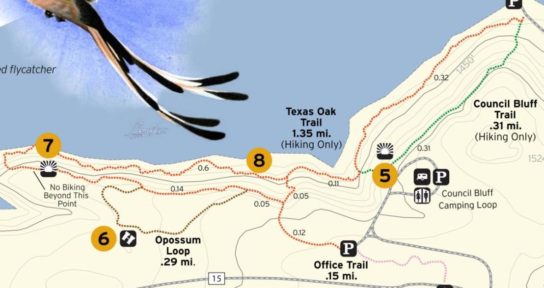 #7 TEXAS OAK TRAIL OVERLOOK - Lake Brownwood State Park
